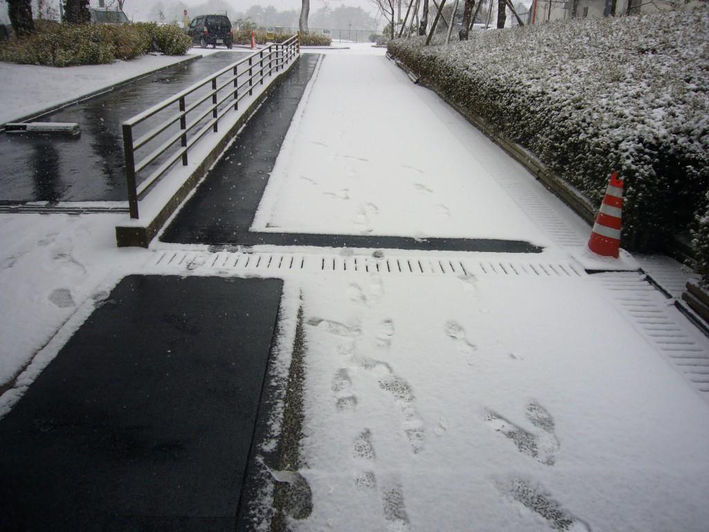 東北大学通路融雪P1070308